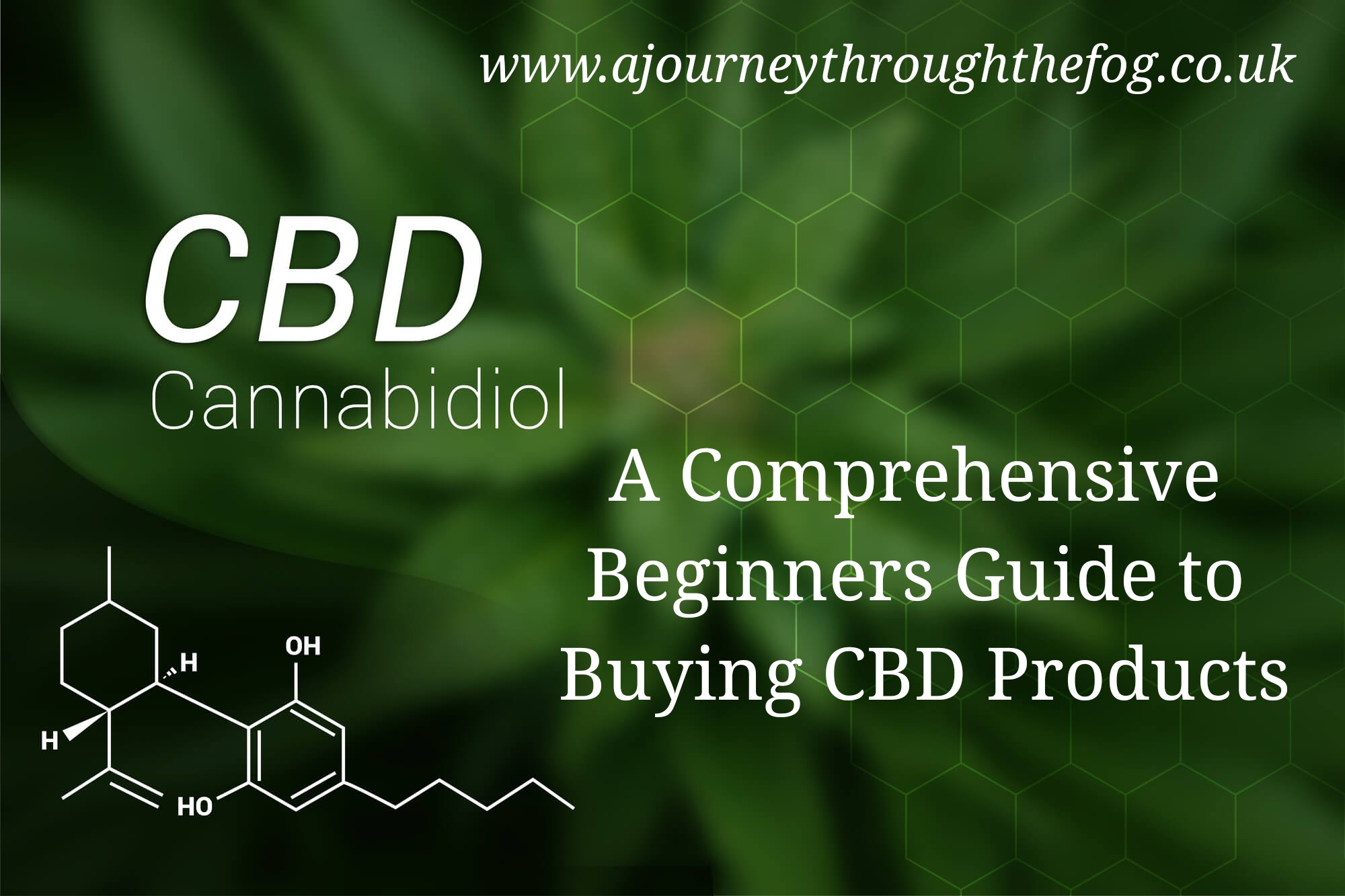 A Comprehensive Beginners Guide to Buying CBD Products – A